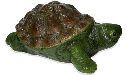 Черепаха большая (3.53)
