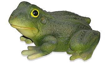 Лягушка квакушка (3.88)