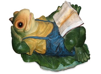 Лягушка с книгой (3.36)