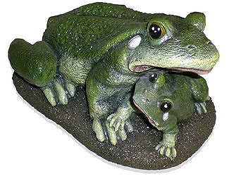 Семья лягушек (3.89)