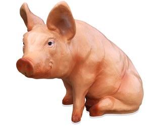 Свинья (3.58)